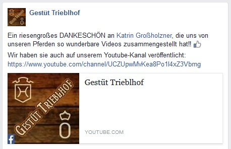trieblhof_youtube_screenshot